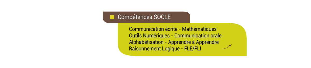 competence-socle-4